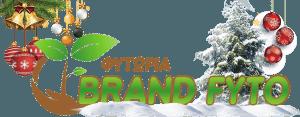 χειμωνιατικο λογότυπο brand fyto